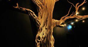 L'arbre maître
