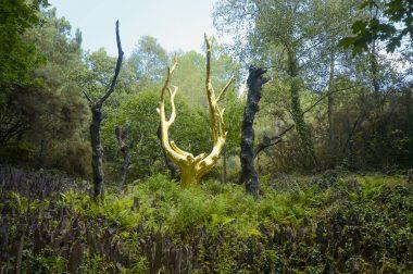 le Val sans retour et l'arbre d'or