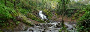 La cascade de l'arbre d'Or dans le Val sans retour