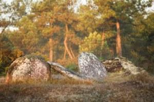 Menhirs de Monteneuf - @Emmanuel Berthier