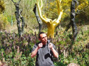Balade contée - Arbre d'Or