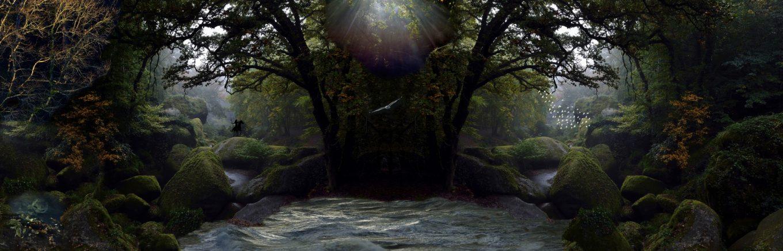 Forêt de légende