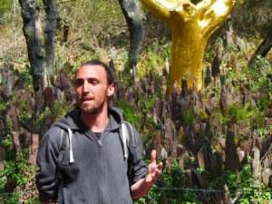 Guillaume - Val sans Retour - Arbre d'or