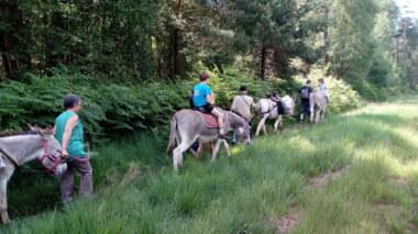 Balade d'Isane, randonnée avec un âne bâté ©Les balades d'Isane