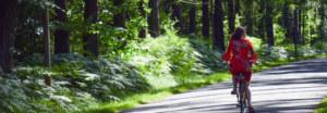 Vélo électrique forêt Printemps