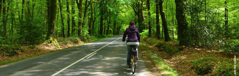 Vélo électrique forêt de Brocéliande printemps.