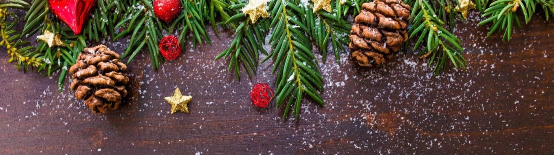 noêl nature décoration