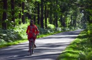 balade vélo électrique forêt de Brocéliande