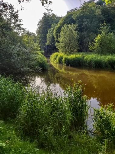 Vallée du Serein, Treffendel, balade étang. Photo Meggane Cappello