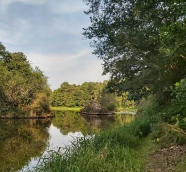 étang de l'étunel, vallée du Serein, Treffendel