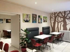 salle-bar-le-brecilien3